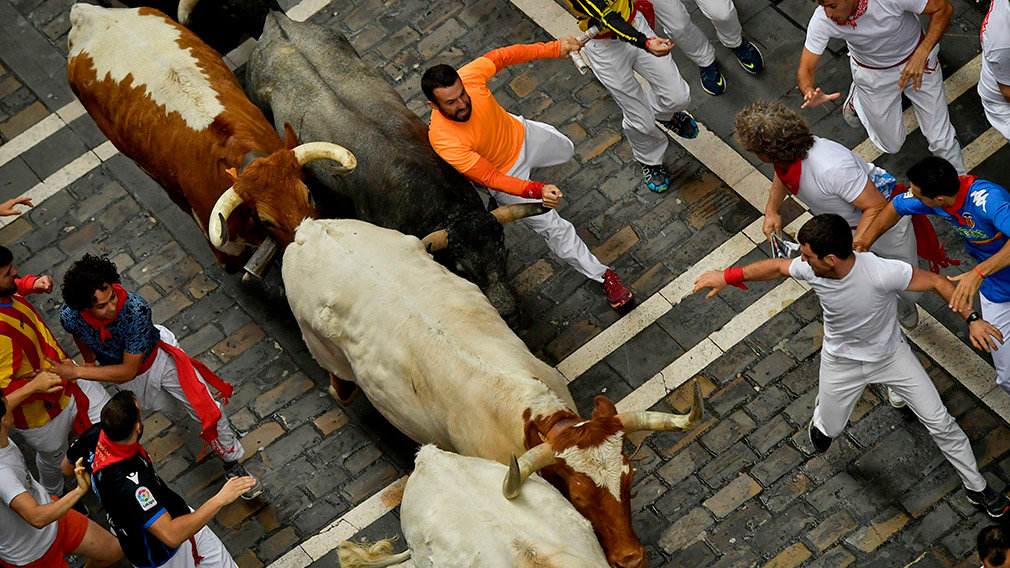Revellers sprint near bulls and steers during the running of the bulls at the San Fermin festival in Pamplona, Spain, July 9, 2019.