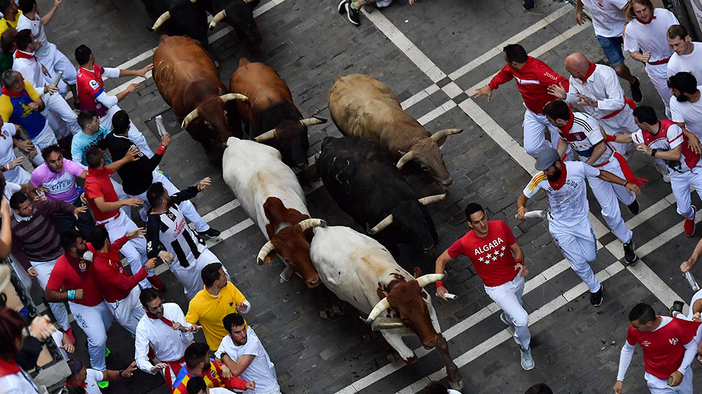 Revellers run next to fighting bulls during the running of the bulls at the San Fermin Festival, in Pamplona, northern Spain, Friday, July 12, 2019. Revellers from around the world flock to Pamplona every year to take part in the eight days of the running of the bulls.