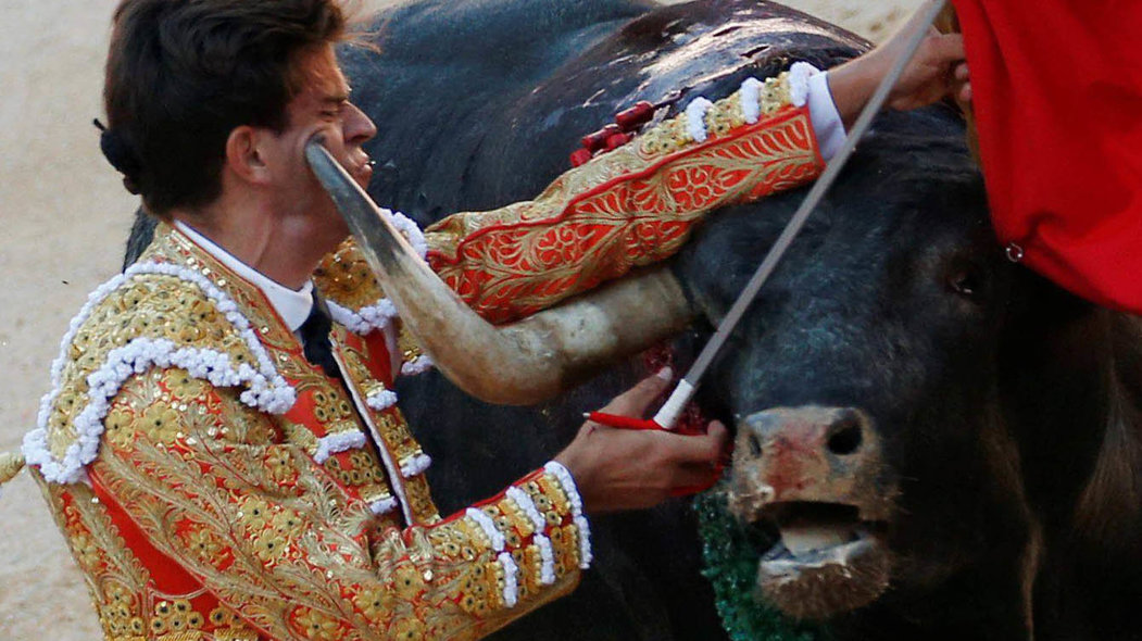 A bull's horn touches the face of Spanish bullfighter Ruben Pinar, barely not goring it, during the last bullfight at the San Fermin festival in Pamplona, northern Spain, July 14, 2017. REUTERS/Susana VeraCODE: X01622