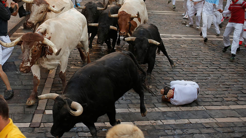 Revellers sprint near bulls and steers during the running of the bulls at the San Fermin festival in Pamplona, Spain, July 11, 2019. REUTERS/Jon Nazca