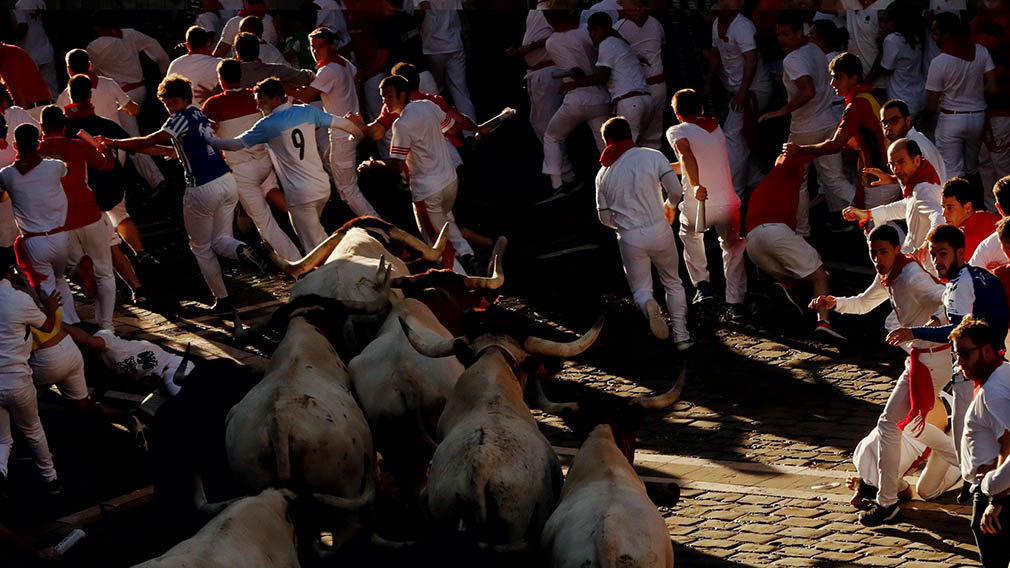 Revellers sprint near bulls and steers during the running of the bulls at the San Fermin festival in Pamplona, Spain, July 11, 2019. REUTERS/Susana Vera
