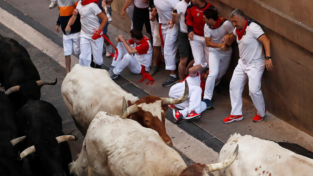 Revellers stand near bulls and steers during the running of the bulls at the San Fermin festival in Pamplona, Spain, July 11, 2019. REUTERS/Susana Vera