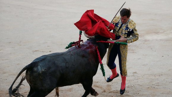 Spanish bullfighter Eduardo Davila Miura gets tackled by a bull during the last bullfight at the San Fermin Festival in Pamplona, northern Spain, July 14, 2016. REUTERS/Susana VeraCODE: X01622