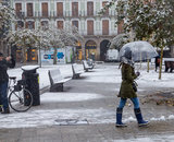 Nevada en Pamplona (49). IÑIGO ALZUGARAY